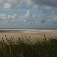 Amrumer Strand I