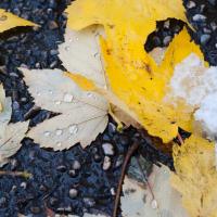 Winter bedeckt den Herbst